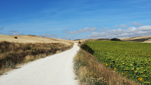 Caminho de Santiago - The Way Notes
